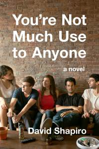 You're Not Use to Anyone by David Shapiro