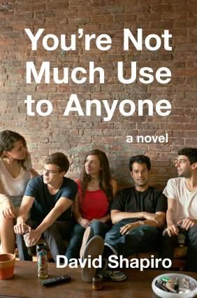 You're Not Use to Anyone by David Shapiro